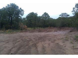 5 Hidden Lane, Cedar Crest, NM 87008 (MLS #943128) :: Campbell & Campbell Real Estate Services