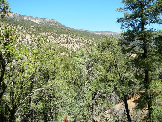 0 River Road, Jemez Springs, NM 87025 (MLS #948424) :: Campbell & Campbell Real Estate Services