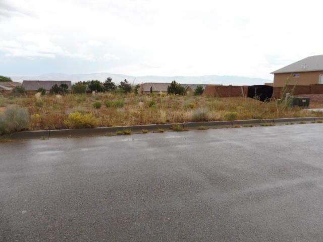 1261 Pinzon Street NW, Los Lunas, NM 87031 (MLS #948506) :: The Buchman Group