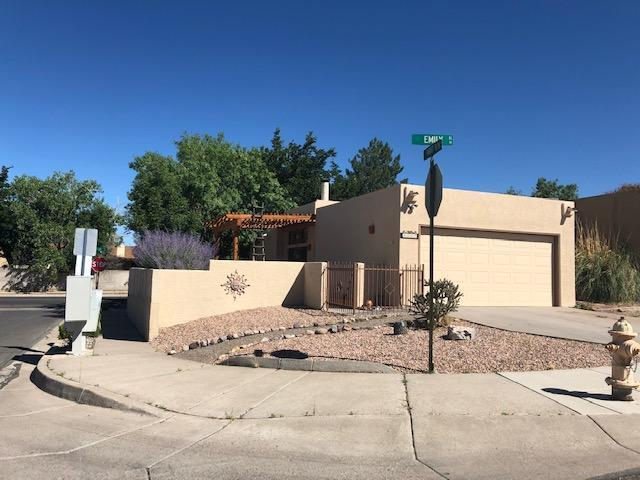 7101 Emily Street NE, Albuquerque, NM 87109 (MLS #949101) :: The Bigelow Team / Red Fox Realty