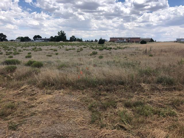 42 Range Road, Edgewood, NM 87015 (MLS #950091) :: Silesha & Company