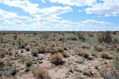 0 Unit 2, Blk 18,Lot 26 Avenue SW, Rio Rancho, NM 87124 (MLS #950287) :: Campbell & Campbell Real Estate Services