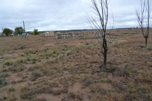 28 Penny Lane, Moriarty, NM 87035 (MLS #950623) :: Campbell & Campbell Real Estate Services