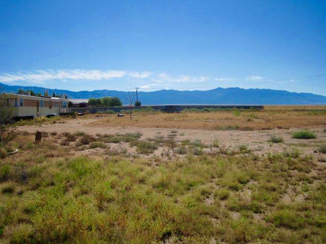 410 Meadow Lake Road, Los Lunas, NM 87031 (MLS #954229) :: Campbell & Campbell Real Estate Services