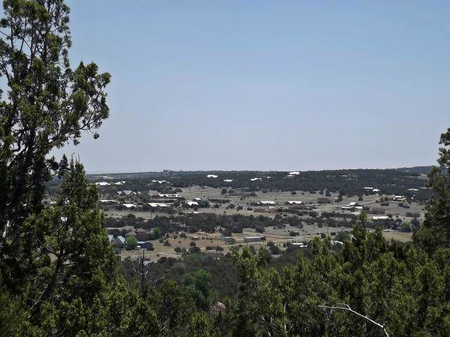 57 Snowflake Trail, Edgewood, NM 87015 (MLS #954291) :: Campbell & Campbell Real Estate Services
