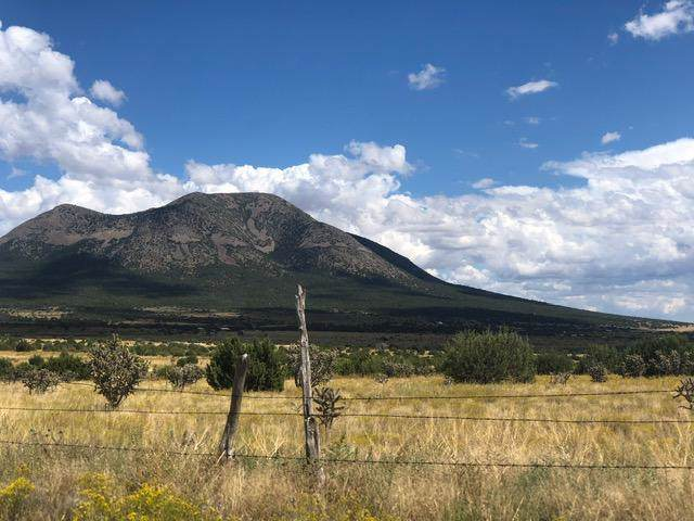 201 Entranosa Road, Edgewood, NM 87015 (MLS #954427) :: Campbell & Campbell Real Estate Services