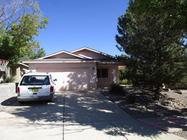 613 Sedona Meadows Drive NE, Rio Rancho, NM 87144 (MLS #954458) :: Silesha & Company