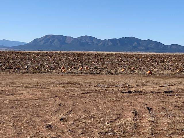 28 Goa Way Way, Stanley, NM 87056 (MLS #956422) :: Campbell & Campbell Real Estate Services