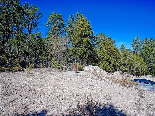 15 Tablazon Court, Tijeras, NM 87059 (MLS #956426) :: Campbell & Campbell Real Estate Services