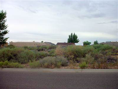 Hillside Drive, Los Lunas, NM 87031 (MLS #956554) :: Campbell & Campbell Real Estate Services