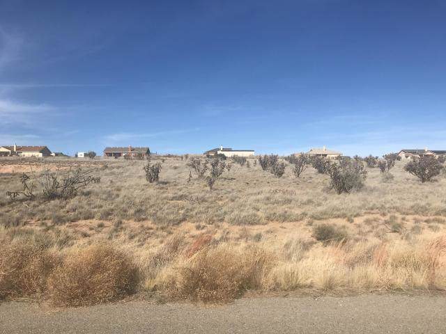 9 Half Moon Road, Edgewood, NM 87015 (MLS #957200) :: Campbell & Campbell Real Estate Services