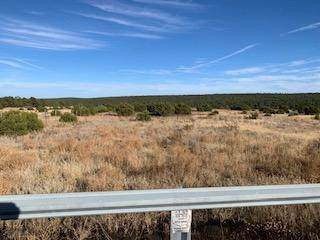 0 Hwy 217, Tijeras, NM 87059 (MLS #957429) :: Campbell & Campbell Real Estate Services