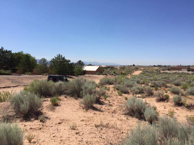1601 Nez Perce Loop NE, Rio Rancho, NM 87144 (MLS #957786) :: The Bigelow Team / Red Fox Realty