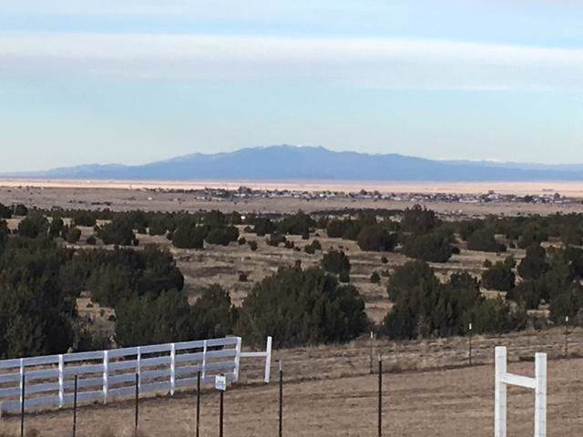 Lot 8 Blk 2 Woodland Hills, Edgewood, NM 87015 (MLS #959210) :: Campbell & Campbell Real Estate Services