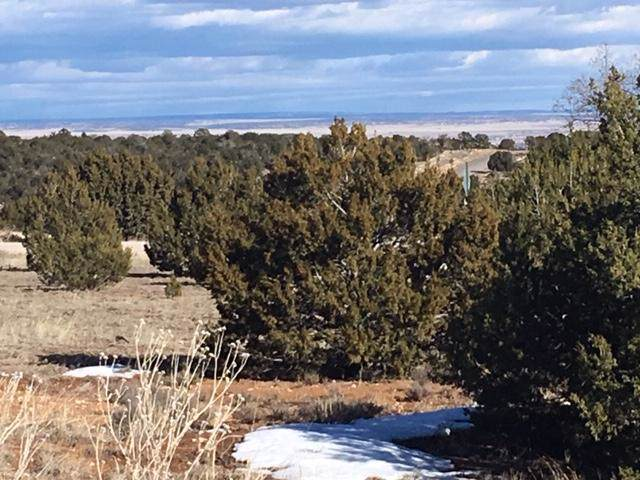 1 Woodland Hills Drive Drive, Edgewood, NM 87015 (MLS #959217) :: Campbell & Campbell Real Estate Services