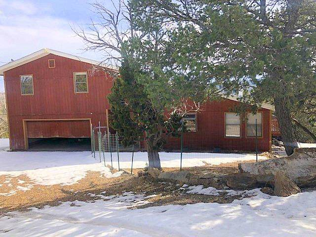 171 Sangre De Cristo, Cedar Crest, NM 87008 (MLS #959219) :: Sandi Pressley Team