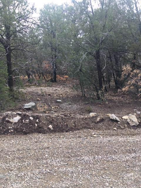 44 Crestwood Loop Drive, Tijeras, NM 87059 (MLS #959695) :: Sandi Pressley Team