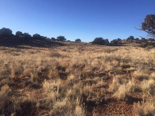 67 Enchanted Mesa Trail, Grants, NM 87020 (MLS #960003) :: Campbell & Campbell Real Estate Services