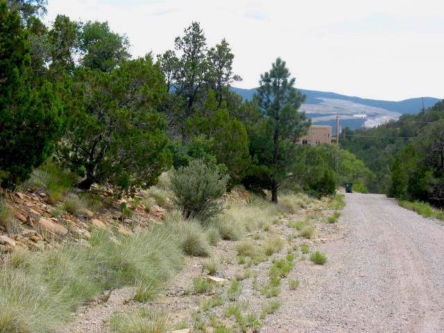 Vista Del Cielo Place, Cedar Crest, NM 87008 (MLS #960233) :: Sandi Pressley Team