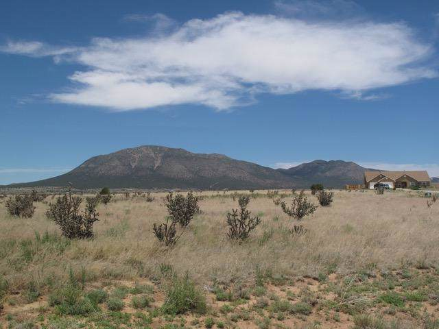 66 Northland Meadows Drive, Edgewood, NM 87015 (MLS #960783) :: The Bigelow Team / Red Fox Realty