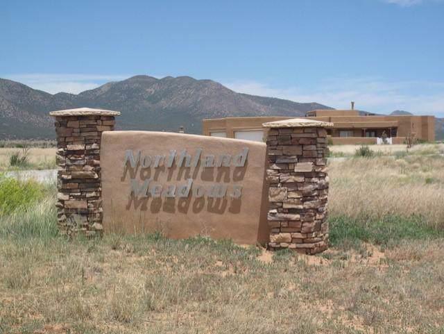 63 Northland Meadows Drive, Edgewood, NM 87015 (MLS #960785) :: Keller Williams Realty