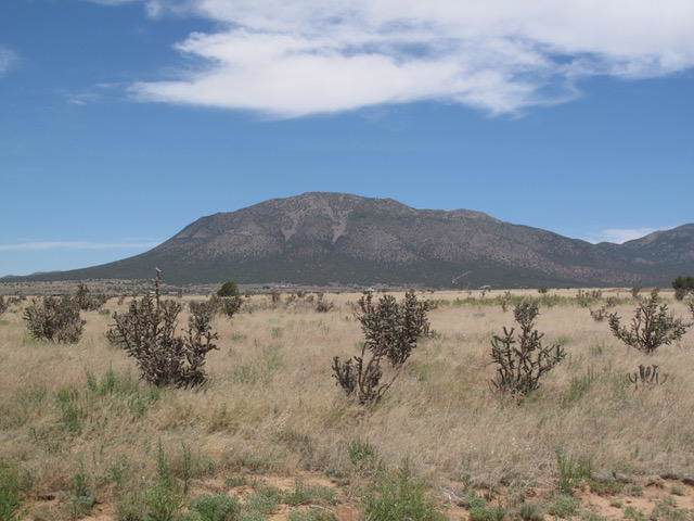 38 Northland Meadows Drive, Edgewood, NM 87015 (MLS #960788) :: Campbell & Campbell Real Estate Services