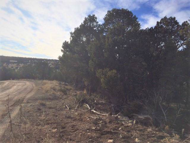 88 Sedillo Canyon Road, Tijeras, NM 87059 (MLS #960915) :: Campbell & Campbell Real Estate Services