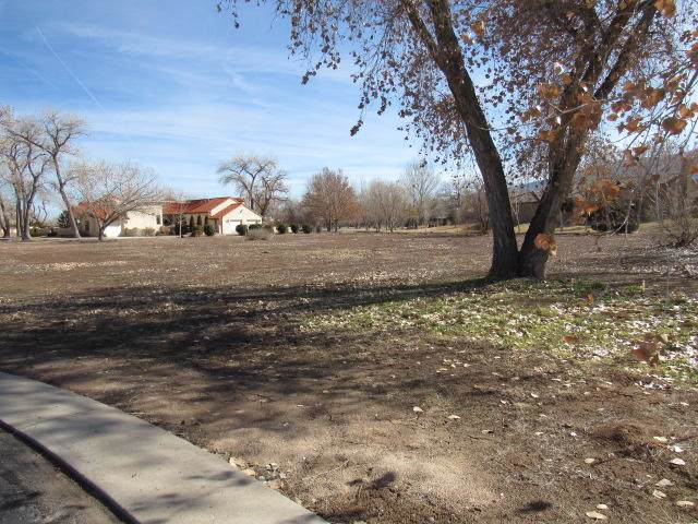 487 Plaza Vinedos, Bernalillo, NM 87004 (MLS #961090) :: Campbell & Campbell Real Estate Services