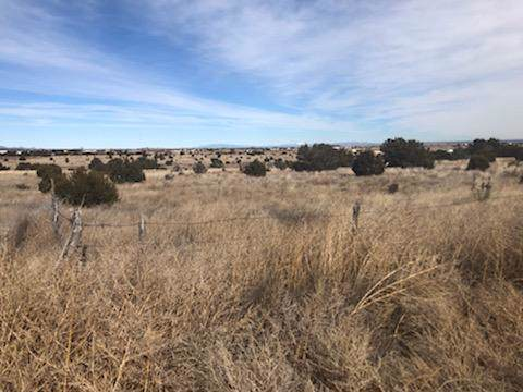 Cedar Lane, Moriarty, NM 87035 (MLS #961624) :: Campbell & Campbell Real Estate Services