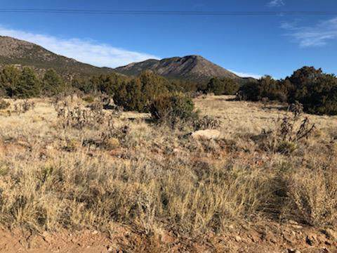11 S Mountain Road, Edgewood, NM 87015 (MLS #961690) :: Campbell & Campbell Real Estate Services
