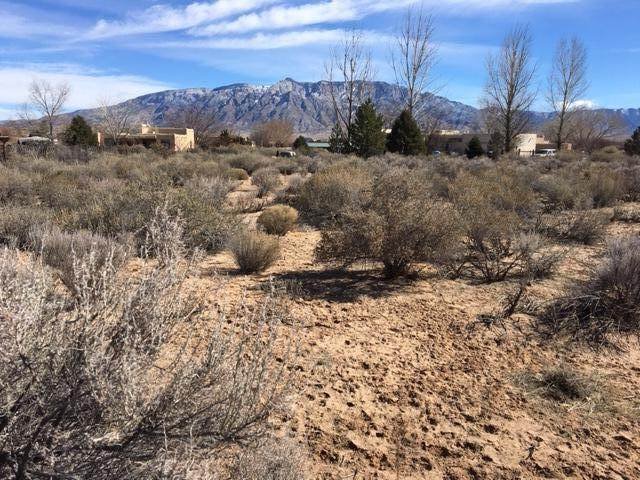 128 Carey Road, Corrales, NM 87048 (MLS #962118) :: The Buchman Group