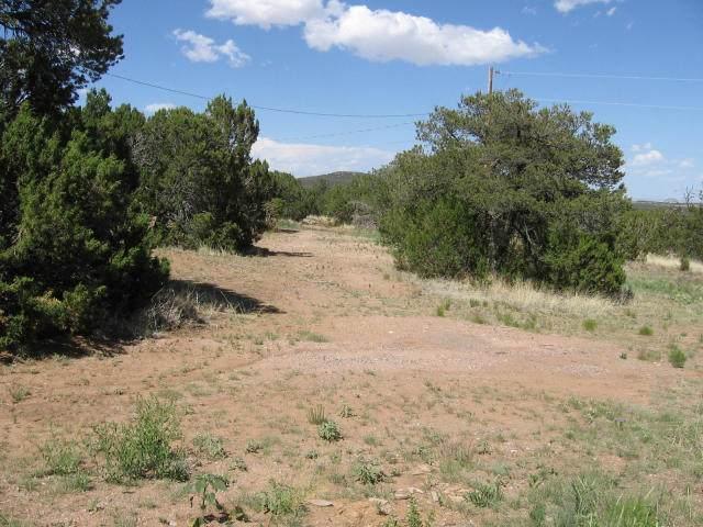 0 Mora Road, Tijeras, NM 87059 (MLS #962318) :: Campbell & Campbell Real Estate Services