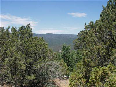 Lots 4 & 5 El Gallo Road, Cedar Crest, NM 87008 (MLS #962677) :: Campbell & Campbell Real Estate Services