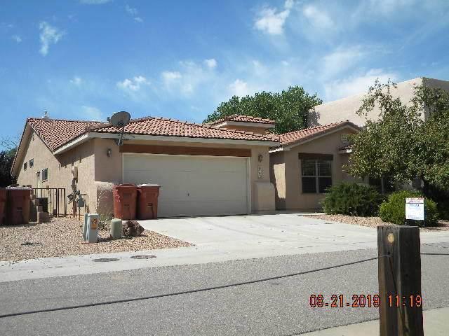 313 Calle Damiano, Bernalillo, NM 87004 (MLS #962840) :: The Buchman Group