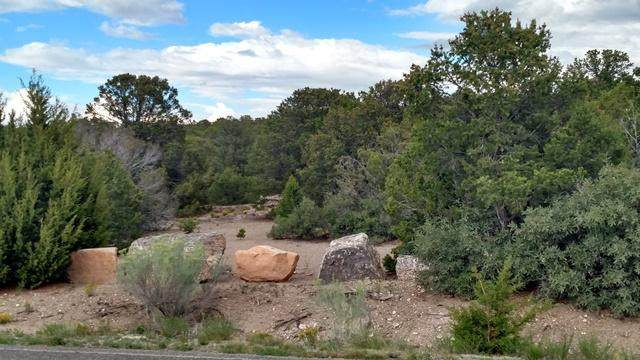 6 Sunset View Drive, Tijeras, NM 87059 (MLS #963306) :: The Buchman Group