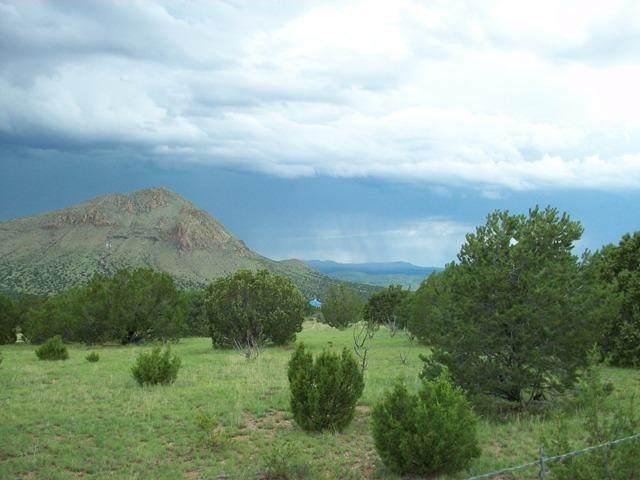 Galilee Subdivision, Magdalena, NM 87825 (MLS #964702) :: Berkshire Hathaway HomeServices Santa Fe Real Estate