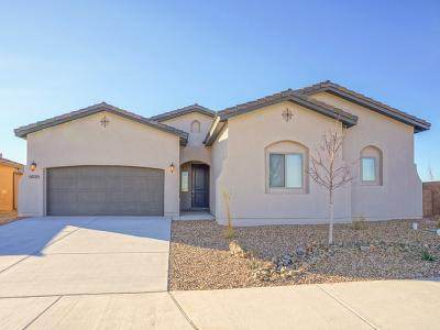 6020 Goldenseal Place NW, Albuquerque, NM 87120 (MLS #966271) :: The Buchman Group