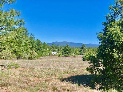 11033 Nm-337, Tijeras, NM 87059 (MLS #968012) :: Campbell & Campbell Real Estate Services