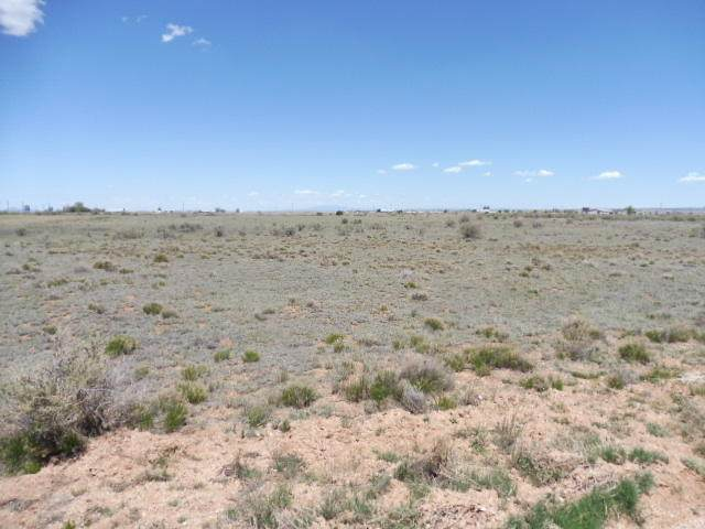Sombrero Avenue, Moriarty, NM 87035 (MLS #968054) :: The Bigelow Team / Red Fox Realty