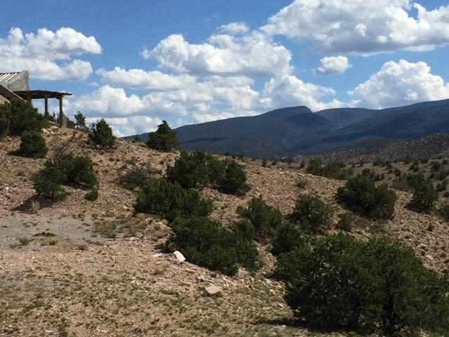 Camino Halcon, Placitas, NM 87043 (MLS #968161) :: The Buchman Group