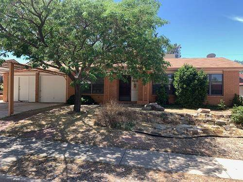 11516 Riviera Road NE, Albuquerque, NM 87111 (MLS #968874) :: Campbell & Campbell Real Estate Services