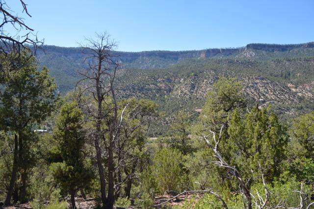 Lot B Indian Mesa Subdivision, Jemez Springs, NM 87025 (MLS #969342) :: Campbell & Campbell Real Estate Services
