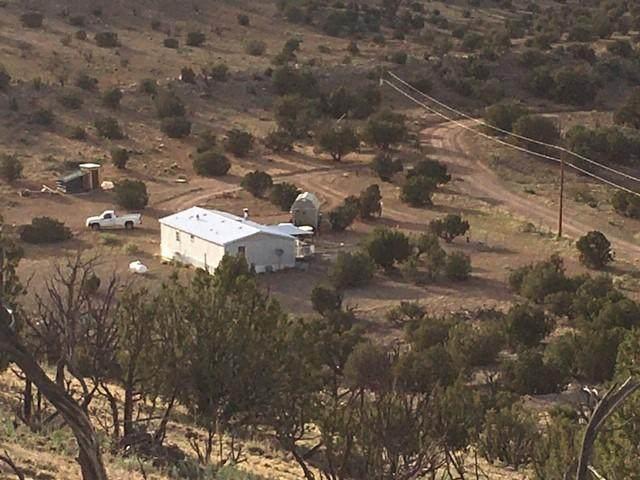 30 Geronimo Pass, Magdalena, NM 87825 (MLS #969439) :: The Buchman Group