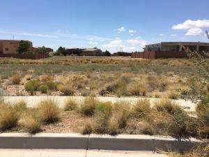 Kibo Drive NW, Albuquerque, NM 87120 (MLS #969893) :: The Buchman Group