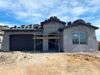 1365 Valle Vista, Los Lunas, NM 87031 (MLS #971158) :: Campbell & Campbell Real Estate Services