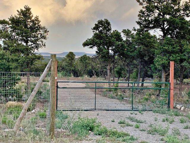 49 Jesse James Road, Edgewood, NM 87015 (MLS #971359) :: Campbell & Campbell Real Estate Services