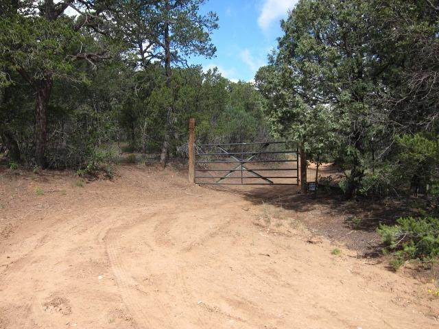 115 Mcginnis Road, Tijeras, NM 87059 (MLS #971413) :: Campbell & Campbell Real Estate Services