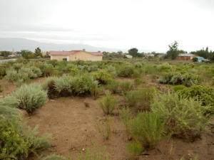 884 Bali Road SE, Rio Rancho, NM 87124 (MLS #971585) :: Berkshire Hathaway HomeServices Santa Fe Real Estate