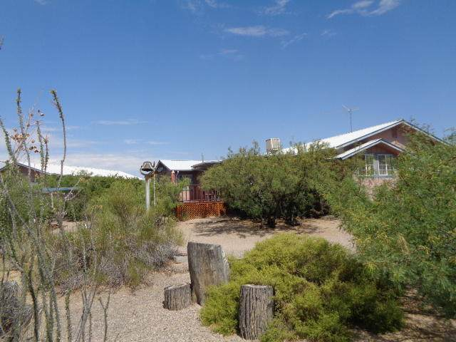 301 Trinity Avenue, Elephant Butte, NM 87935 (MLS #972380) :: Campbell & Campbell Real Estate Services