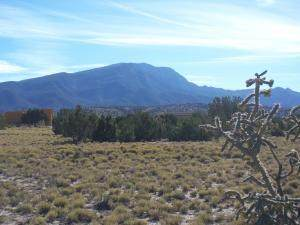 Lot #34 Road, Placitas, NM 87043 (MLS #973523) :: The Bigelow Team / Red Fox Realty